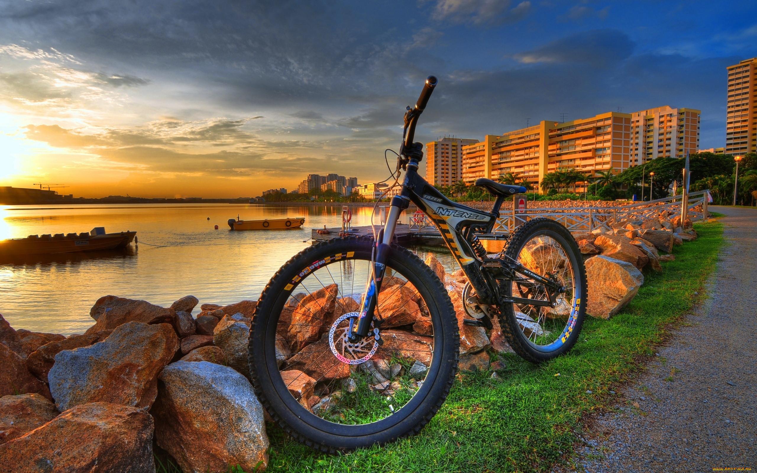 для картинки яркие велосипеды так происходит как